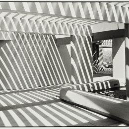 American, 1921–2011 Sanguaro National Park, Arizona, 1995 Gelatin silver print Gift of Frederick B. Scheel and the Scheel Family 2010. 007.0117